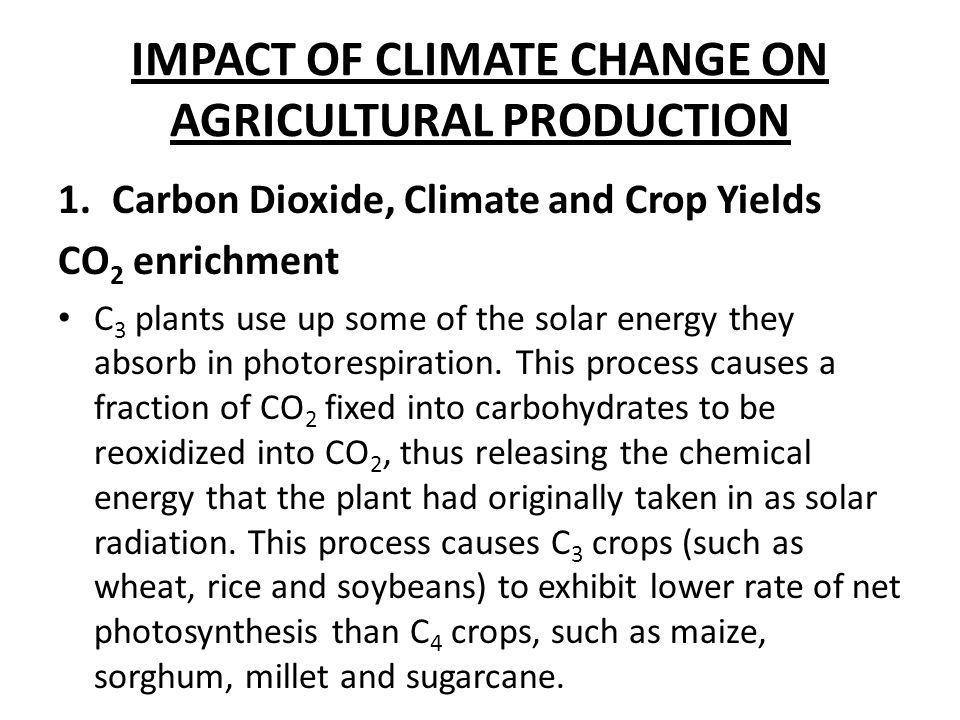 IMPACT OF CLIMATE CHANGE ON AGRICULTURAL PRODUCTION 1.Carbon Dioxide, Climate and Crop Yields CO 2 enrichment C 3 plants use up some of the solar ener