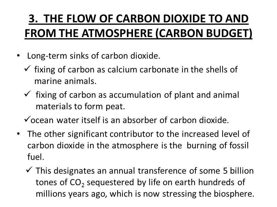 3. THE FLOW OF CARBON DIOXIDE TO AND FROM THE ATMOSPHERE (CARBON BUDGET) Long-term sinks of carbon dioxide. fixing of carbon as calcium carbonate in t