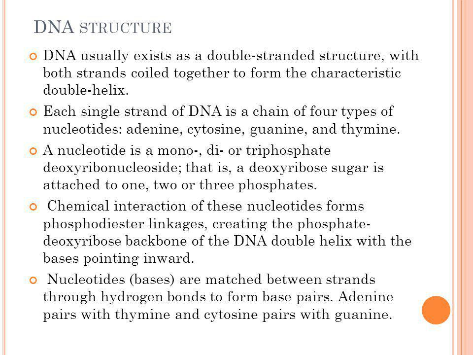 DNA STRUCTURE DNA usually exists as a double-stranded structure, with both strands coiled together to form the characteristic double-helix. Each singl