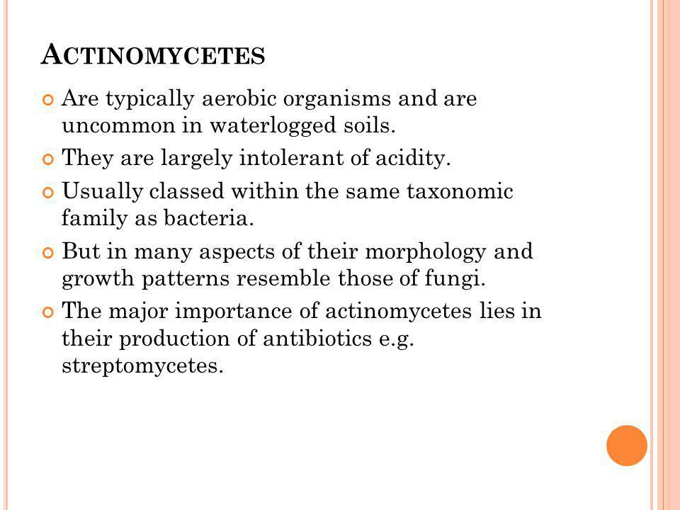 A CTINOMYCETES Are typically aerobic organisms and are uncommon in waterlogged soils. They are largely intolerant of acidity. Usually classed within t