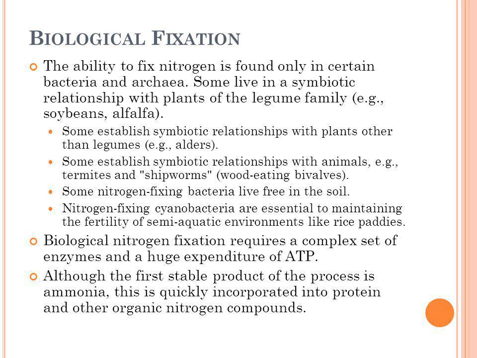 B IOLOGICAL F IXATION The ability to fix nitrogen is found only in certain bacteria and archaea. Some live in a symbiotic relationship with plants of