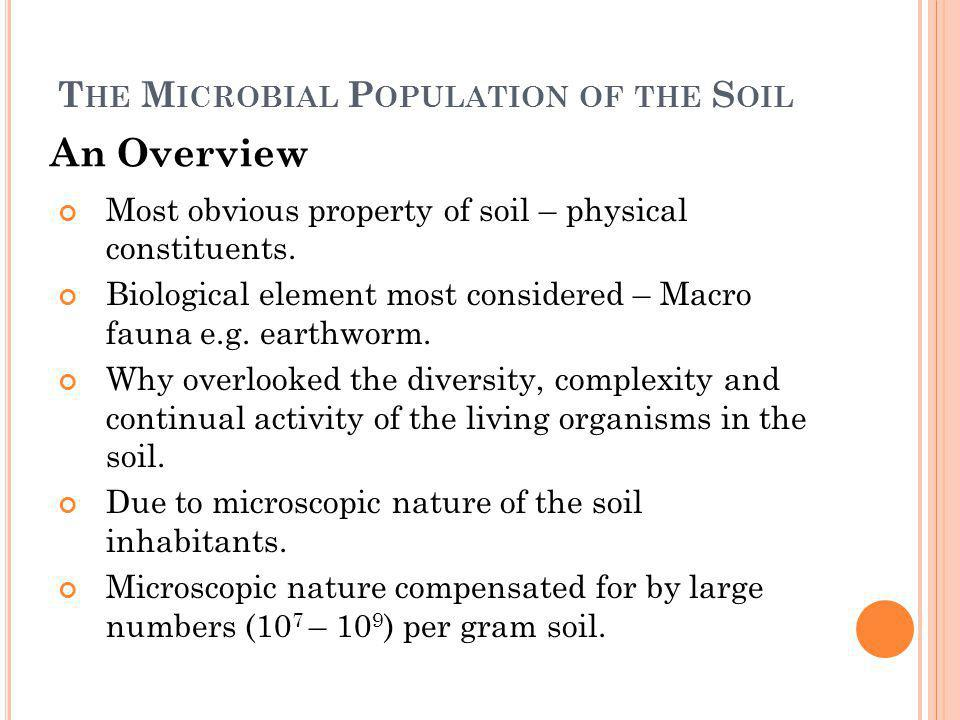 B ACTERIA Most numerous organisms in soil, with viable populations estimated at up to 200 millions individual cells per gram of soil.
