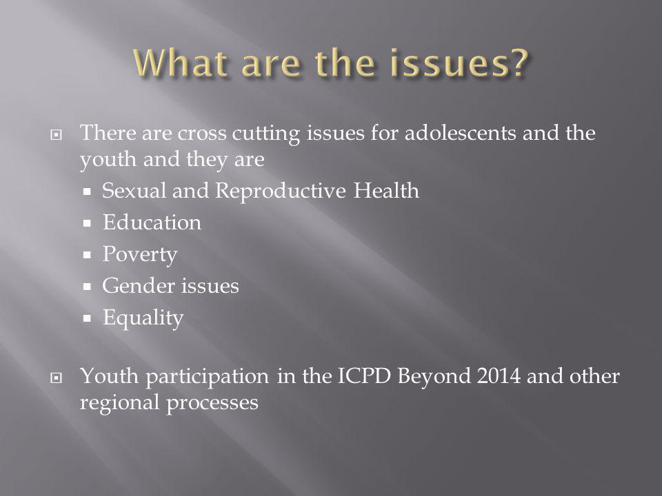  There are cross cutting issues for adolescents and the youth and they are  Sexual and Reproductive Health  Education  Poverty  Gender issues  Equality  Youth participation in the ICPD Beyond 2014 and other regional processes