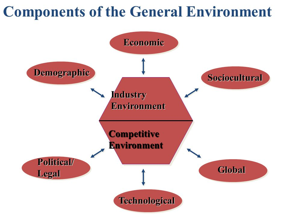 Political/ Legal Economic Technological Global Demographic Sociocultural CompetitiveEnvironment Industry Environment Components of the General Environment