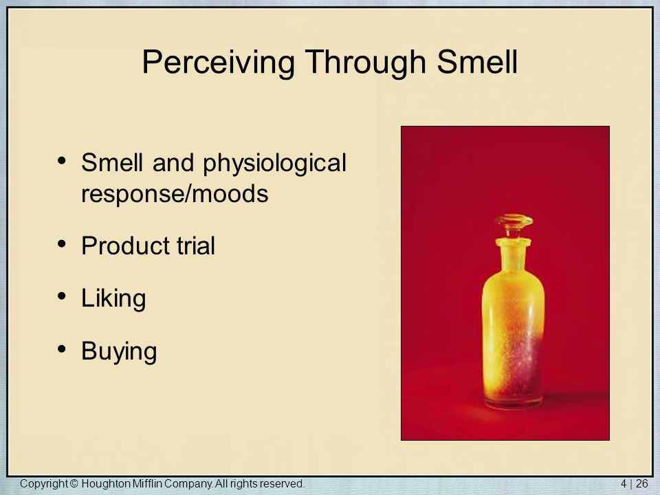 Copyright © Houghton Mifflin Company. All rights reserved.4 | 26 Perceiving Through Smell Smell and physiological response/moods Product trial Liking
