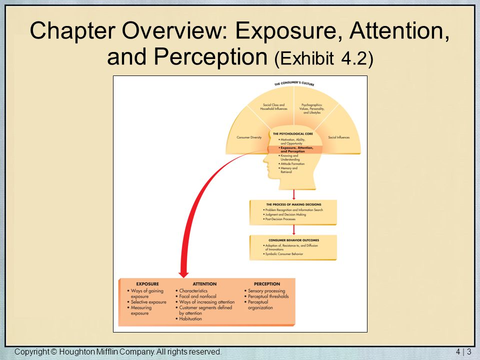 Copyright © Houghton Mifflin Company. All rights reserved.4 | 3 Chapter Overview: Exposure, Attention, and Perception (Exhibit 4.2)