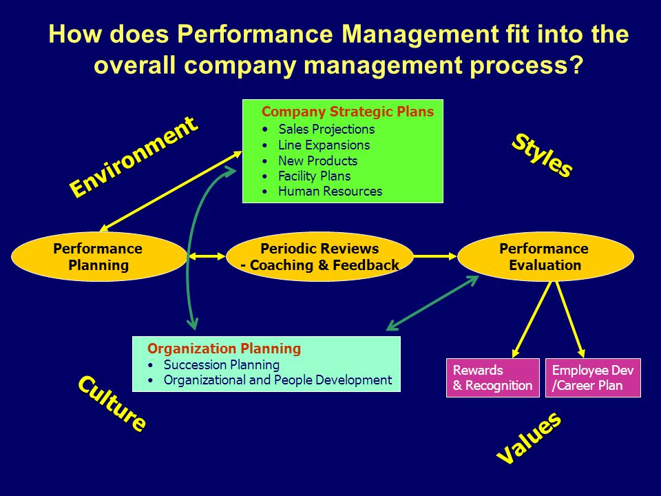 How does Performance Management fit into the overall company management process? Company Strategic Plans Sales Projections Line Expansions New Product