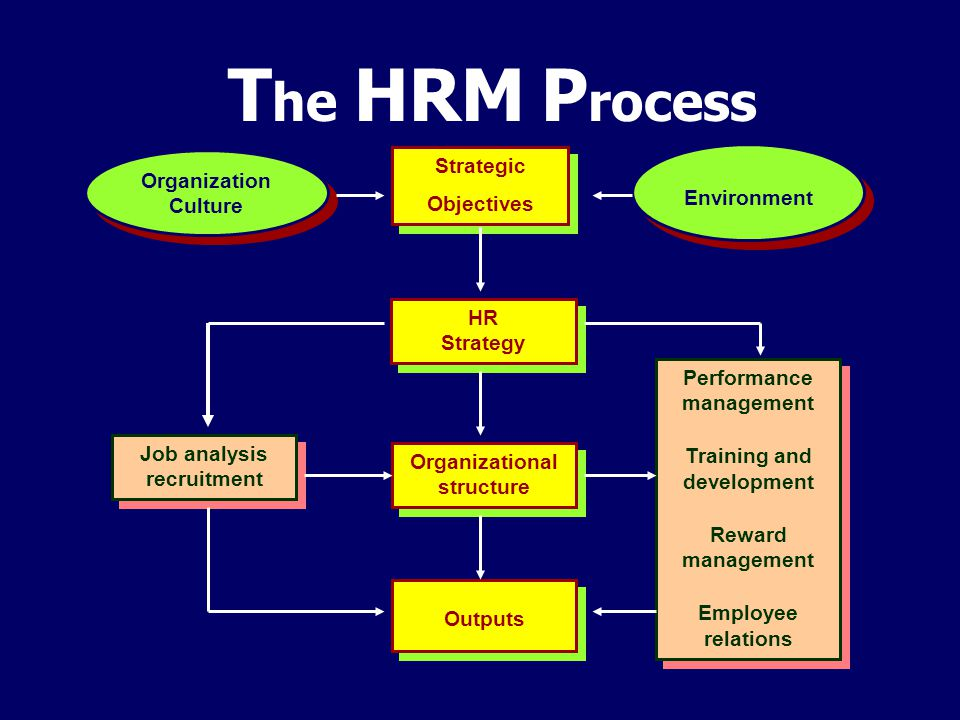 T he HRM P rocess Organization Culture Strategic Objectives Strategic Objectives Environment HR Strategy Organizational structure Outputs Performance