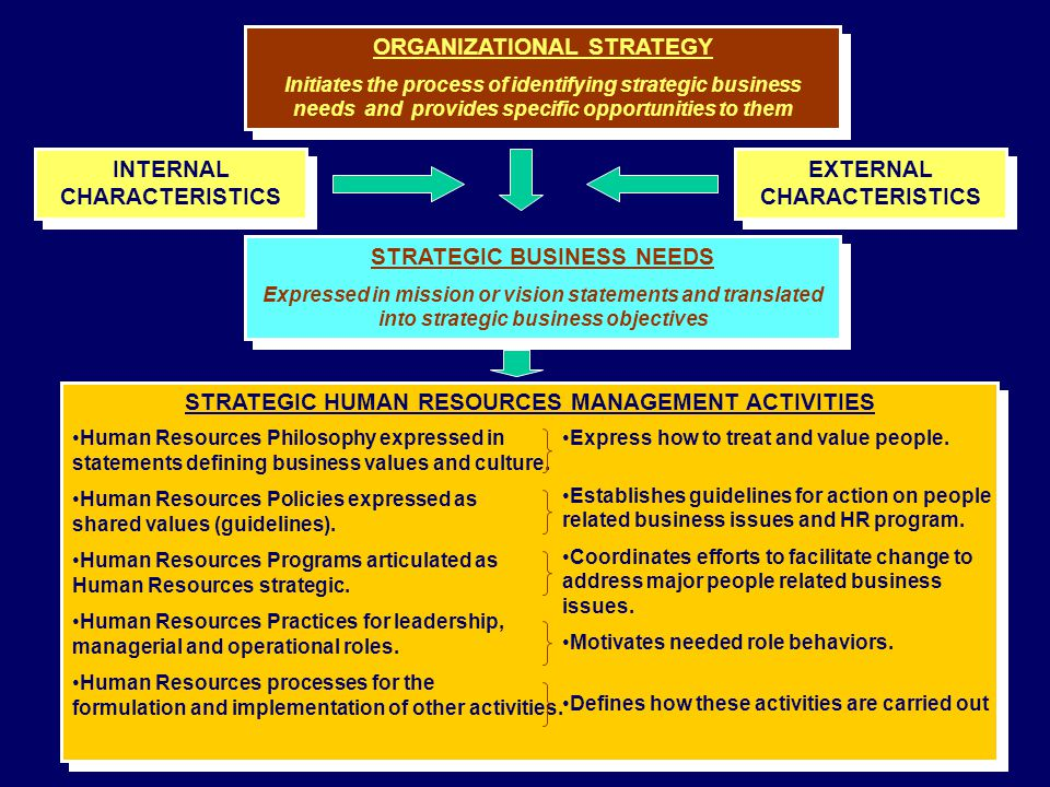 ORGANIZATIONAL STRATEGY Initiates the process of identifying strategic business needs and provides specific opportunities to them ORGANIZATIONAL STRAT