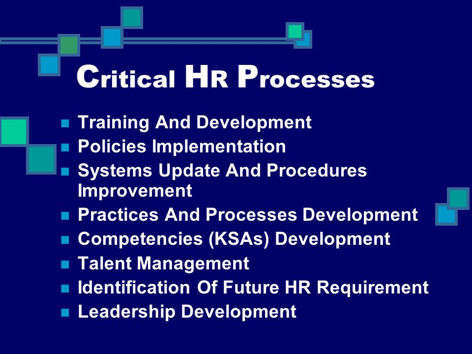 C ritical H R P rocesses Training And Development Policies Implementation Systems Update And Procedures Improvement Practices And Processes Developmen
