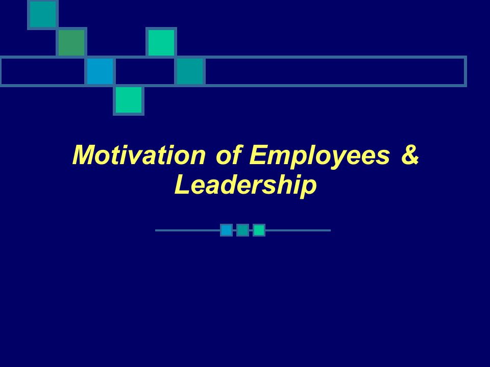 Motivation of Employees & Leadership