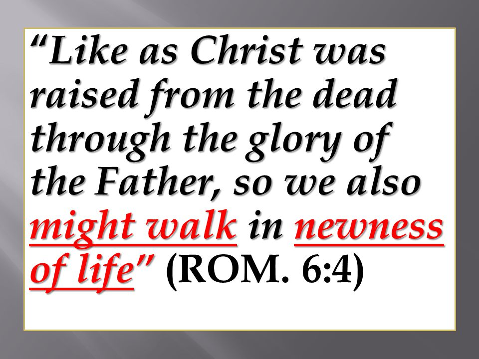""" Like as Christ was raised from the dead through the glory of the Father, so we also might walk in newness of life"" "" Like as Christ was raised from"