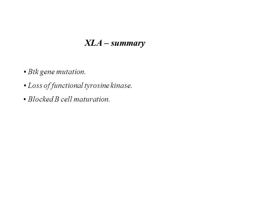 XLA – summary Btk gene mutation. Loss of functional tyrosine kinase. Blocked B cell maturation.