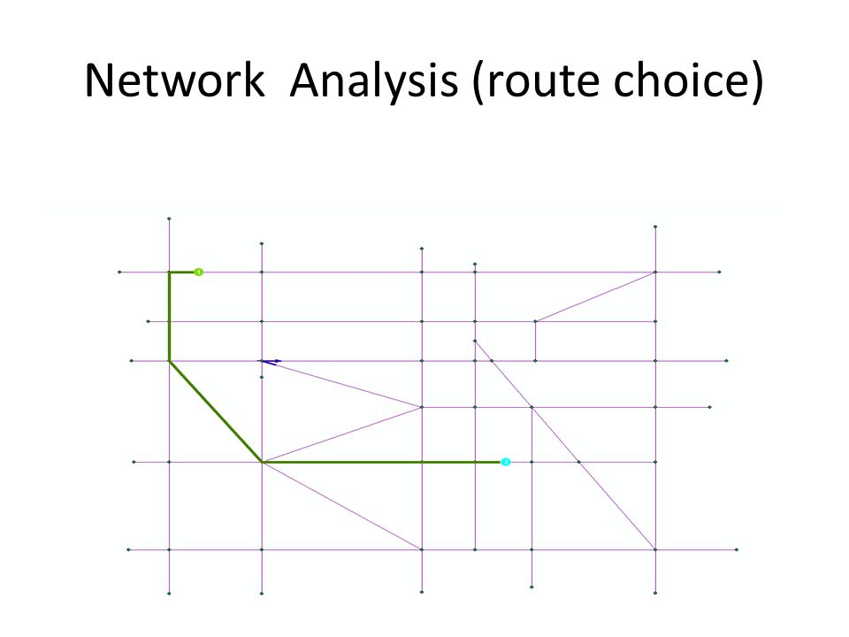 Network Analysis (route choice)