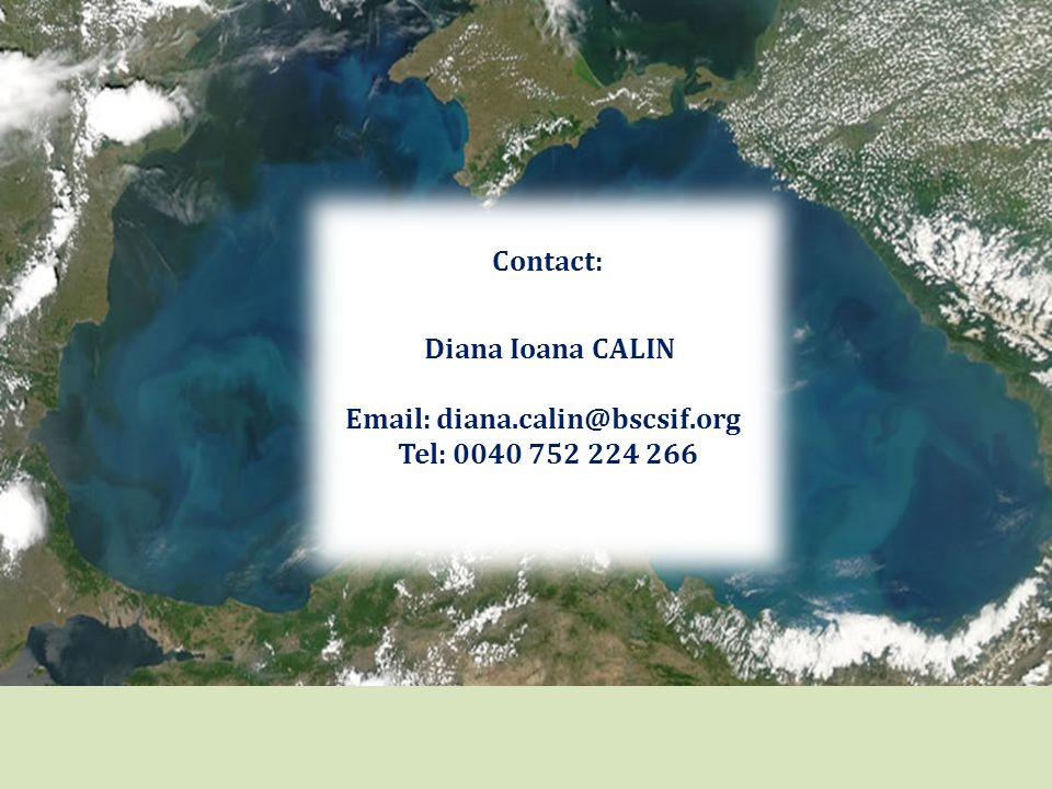 Contact: Diana Ioana CALIN Email: diana.calin@bscsif.org Tel: 0040 752 224 266