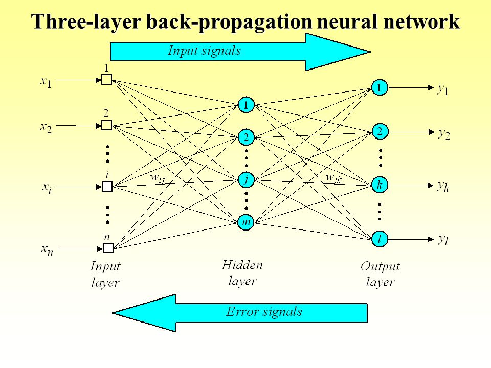 Three-layer back-propagation neural network