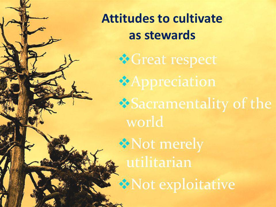 Attitudes to cultivate as stewards  Great respect  Appreciation  Sacramentality of the world  Not merely utilitarian  Not exploitative