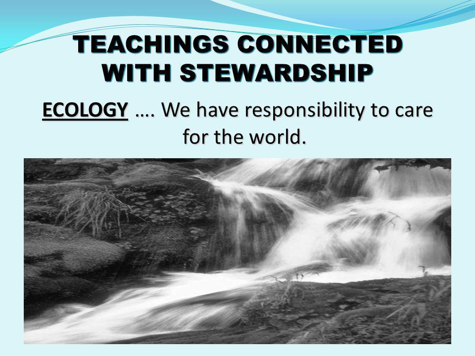 TEACHINGS CONNECTED WITH STEWARDSHIP ECOLOGY …. We have responsibility to care for the world.