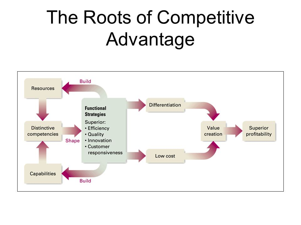 The Roots of Competitive Advantage