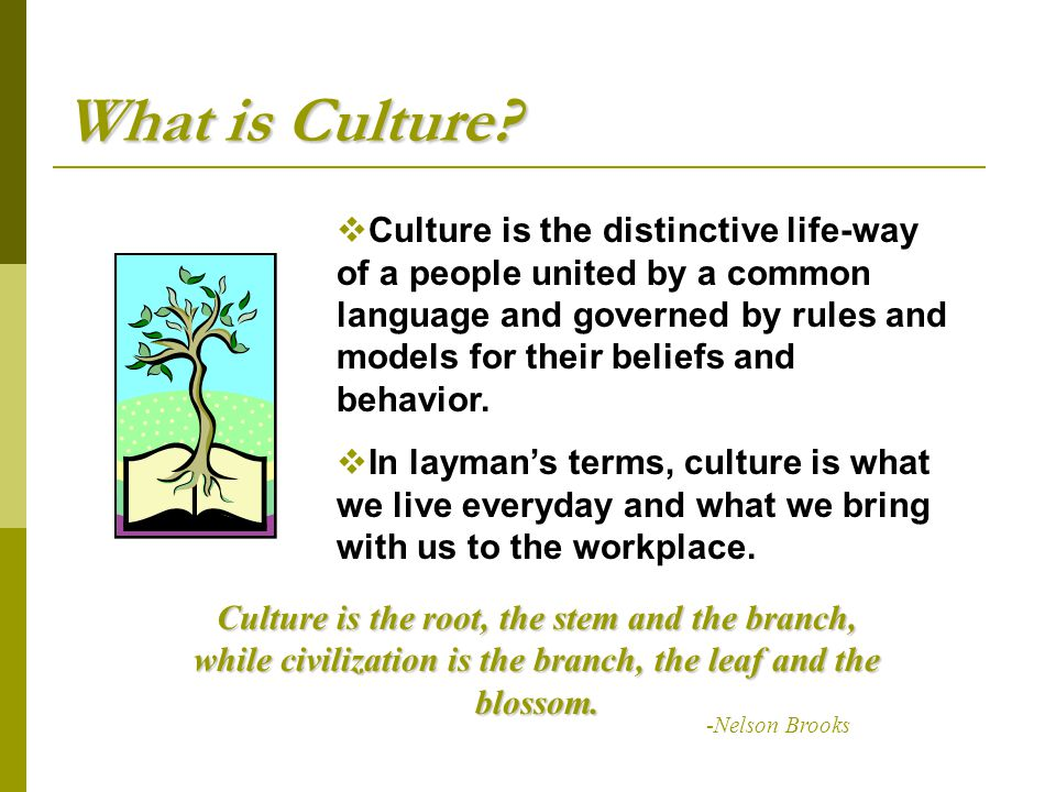 What is Culture?  Culture is the distinctive life-way of a people united by a common language and governed by rules and models for their beliefs and