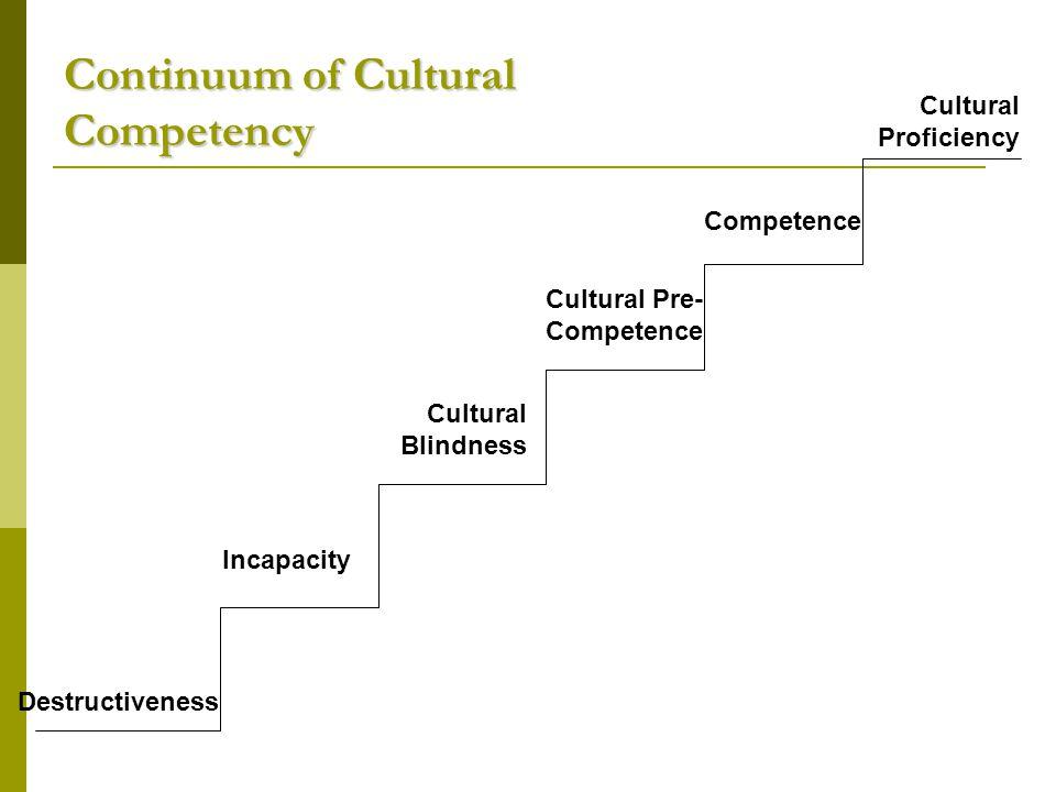 Continuum of Cultural Competency Cultural Destructiveness Cultural Incapacity Cultural Blindness Cultural Pre- Competence Cultural Competence Cultural Proficiency