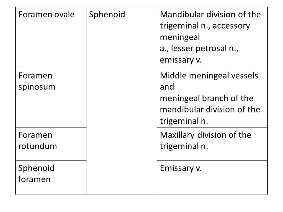 Foramen ovaleSphenoidMandibular division of the trigeminal n., accessory meningeal a., lesser petrosal n., emissary v. Foramen spinosum Middle meninge