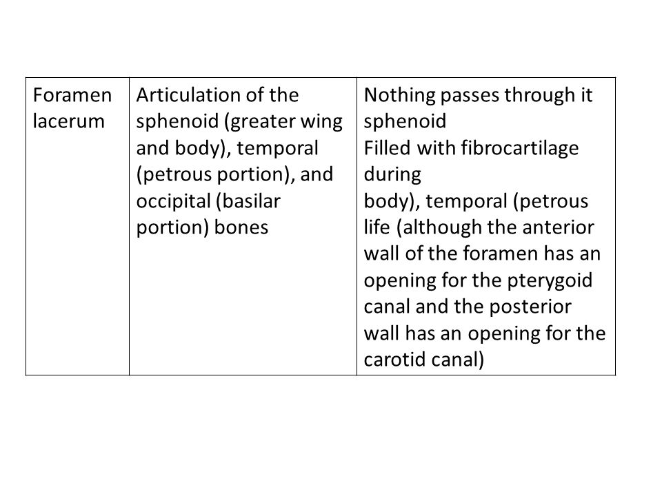 Foramen lacerum Articulation of the sphenoid (greater wing and body), temporal (petrous portion), and occipital (basilar portion) bones Nothing passes