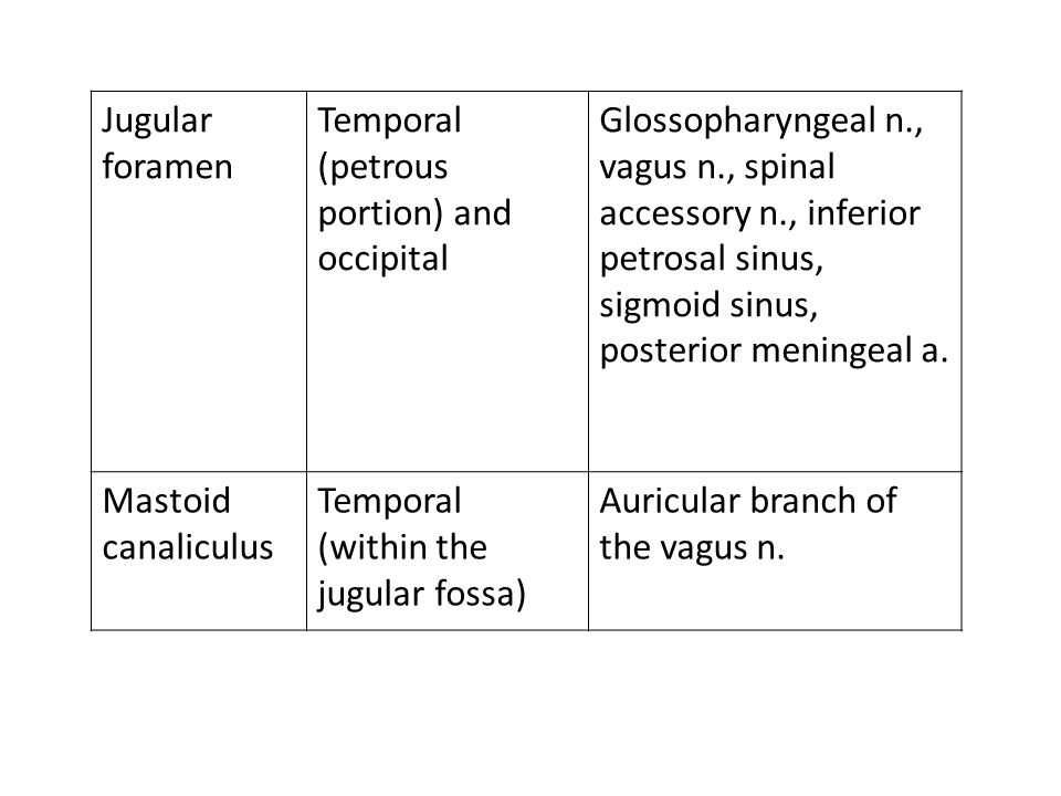 Jugular foramen Temporal (petrous portion) and occipital Glossopharyngeal n., vagus n., spinal accessory n., inferior petrosal sinus, sigmoid sinus, p