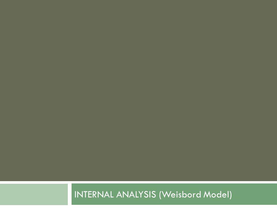 INTERNAL ANALYSIS (Weisbord Model)