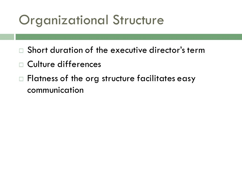 Organizational Structure  Short duration of the executive director's term  Culture differences  Flatness of the org structure facilitates easy comm