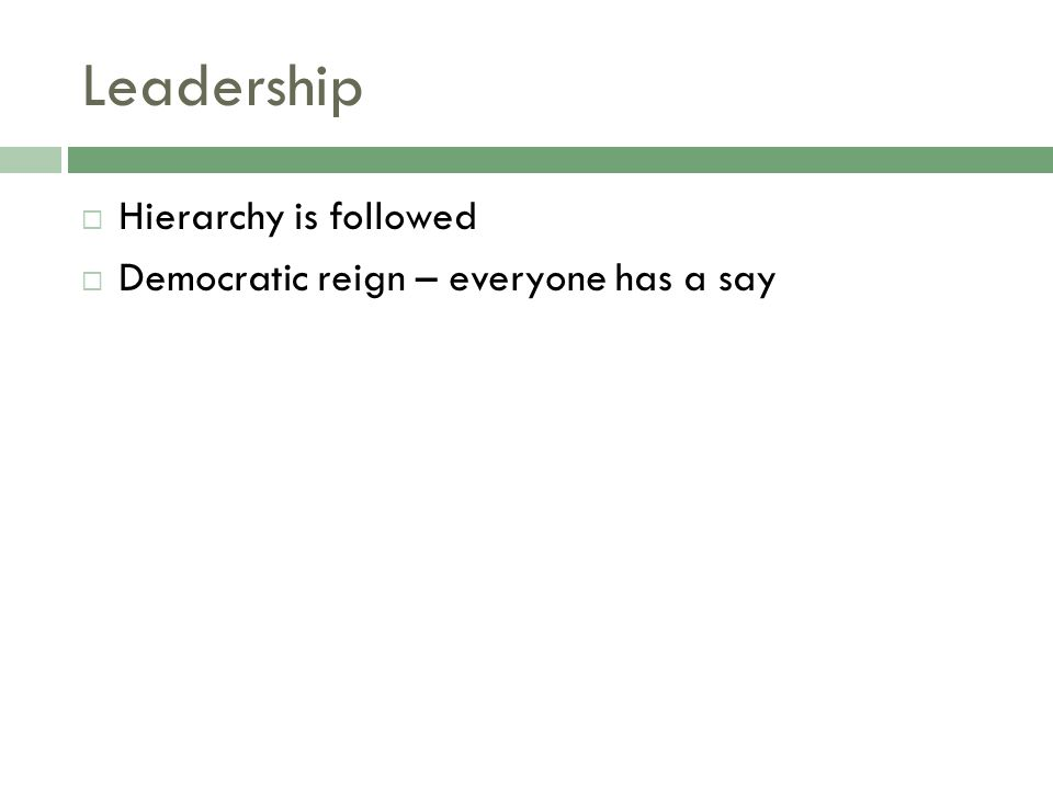 Leadership  Hierarchy is followed  Democratic reign – everyone has a say
