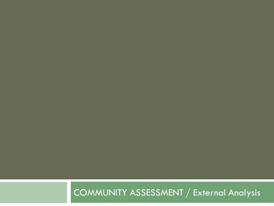 COMMUNITY ASSESSMENT / External Analysis
