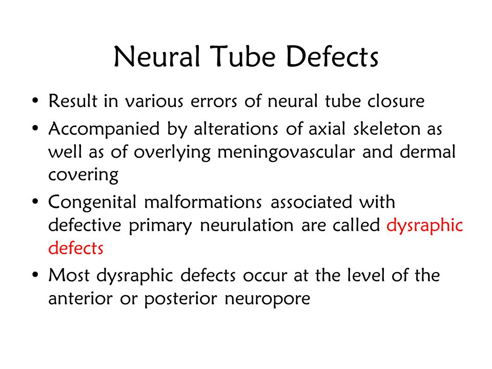 Secondary Neurulation Secondary Neurulation Caudal