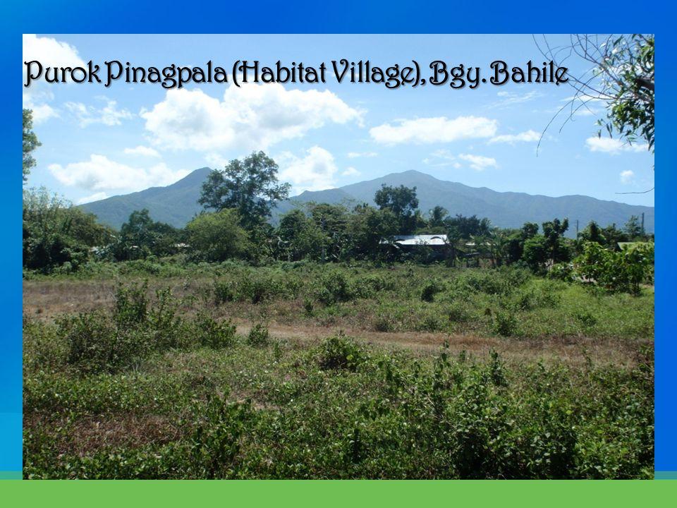 Purok Pinagpala (Habitat Village), Bgy. Bahile Purok Pinagpala (Habitat Village), Bgy. Bahile