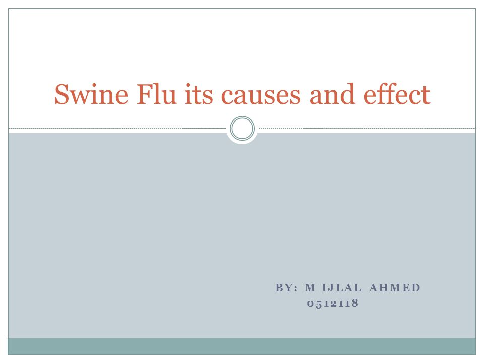 BY: M IJLAL AHMED 0512118 Swine Flu its causes and effect