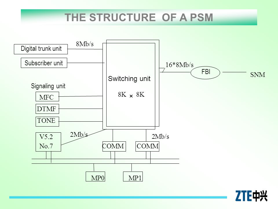 THE STRUCTURE OF A PSM