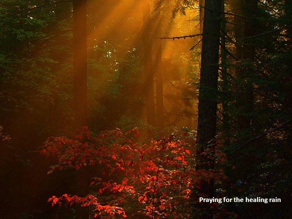 Praying for the healing rain