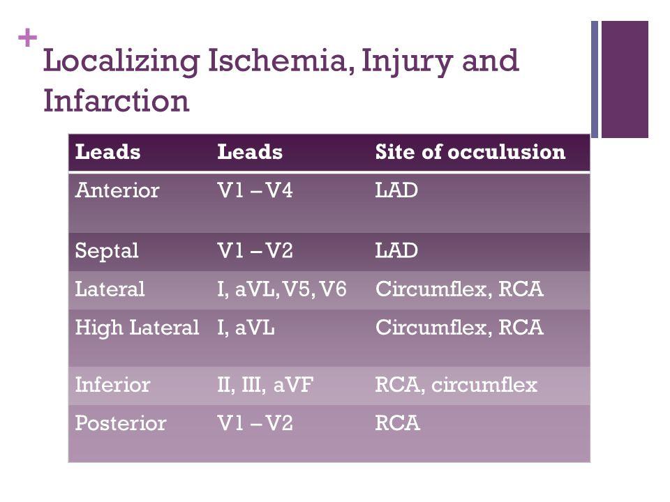 + Localizing Ischemia, Injury and Infarction Leads Site of occulusion AnteriorV1 – V4LAD SeptalV1 – V2LAD LateralI, aVL, V5, V6Circumflex, RCA High La