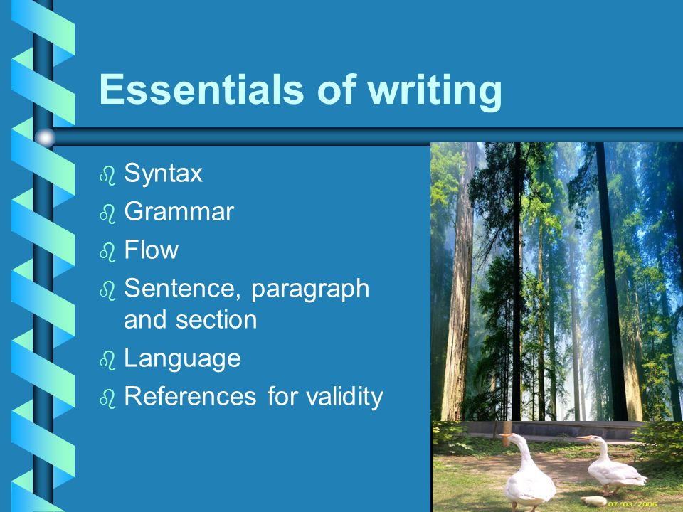 Essentials of writing b b Syntax b b Grammar b b Flow b b Sentence, paragraph and section b b Language b b References for validity