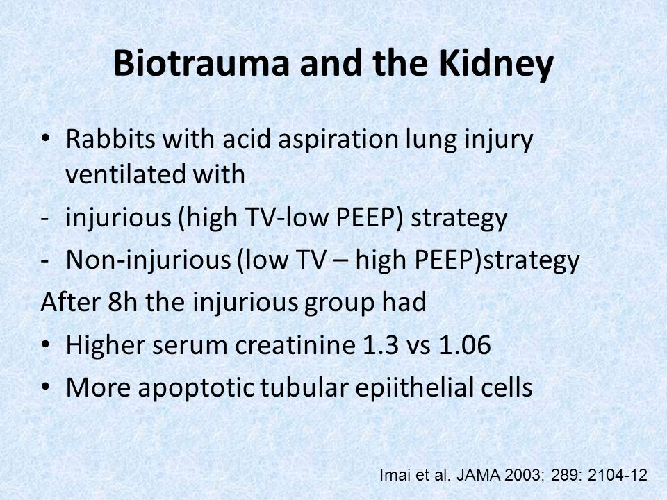Biotrauma and the Kidney Rabbits with acid aspiration lung injury ventilated with -injurious (high TV-low PEEP) strategy -Non-injurious (low TV – high