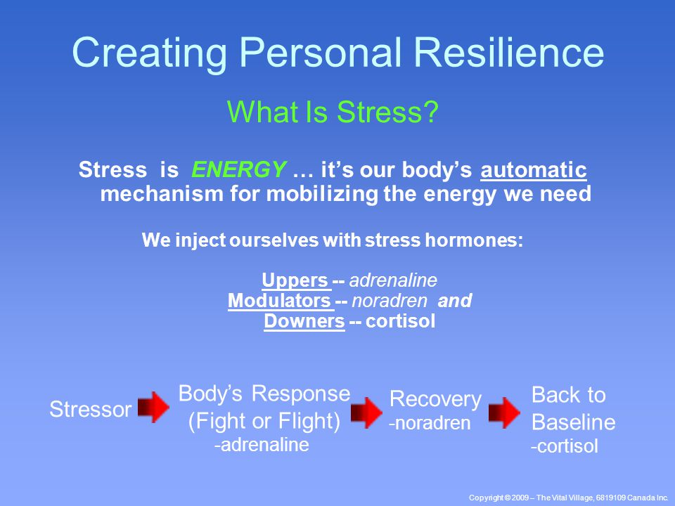 Copyright © 2009 – The Vital Village, 6819109 Canada Inc. What Is Stress? Stress is ENERGY … it's our body's automatic mechanism for mobilizing the en