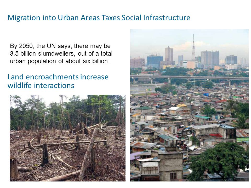Migration into Urban Areas Taxes Social Infrastructure By 2050, the UN says, there may be 3.5 billion slumdwellers, out of a total urban population of about six billion.