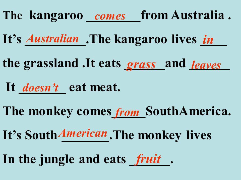 The kangaroo ________from Australia.