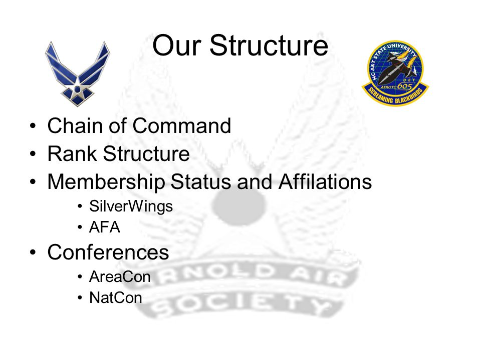 Our Structure Chain of Command Rank Structure Membership Status and Affilations SilverWings AFA Conferences AreaCon NatCon