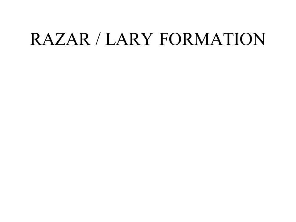 RAZAR / LARY FORMATION