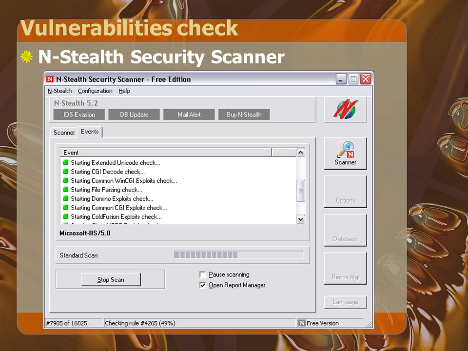 Vulnerabilities check N-Stealth Security Scanner