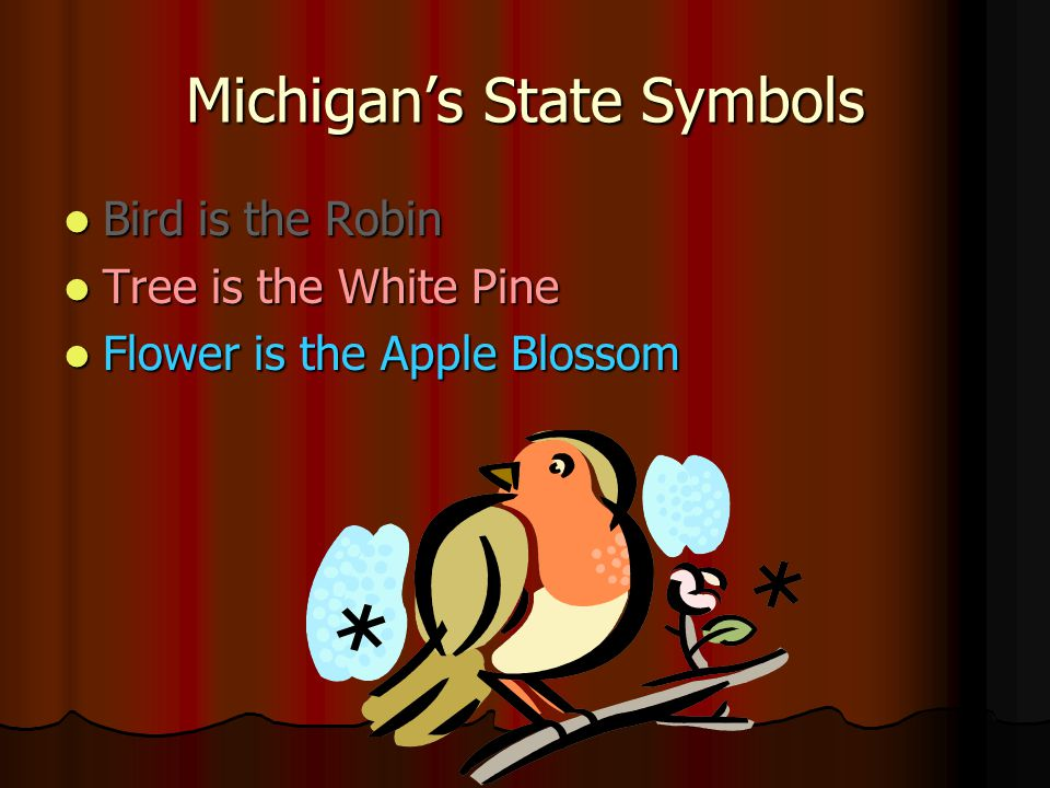 Michigan's State Symbols Bird is the Robin Bird is the Robin Tree is the White Pine Tree is the White Pine Flower is the Apple Blossom Flower is the Apple Blossom