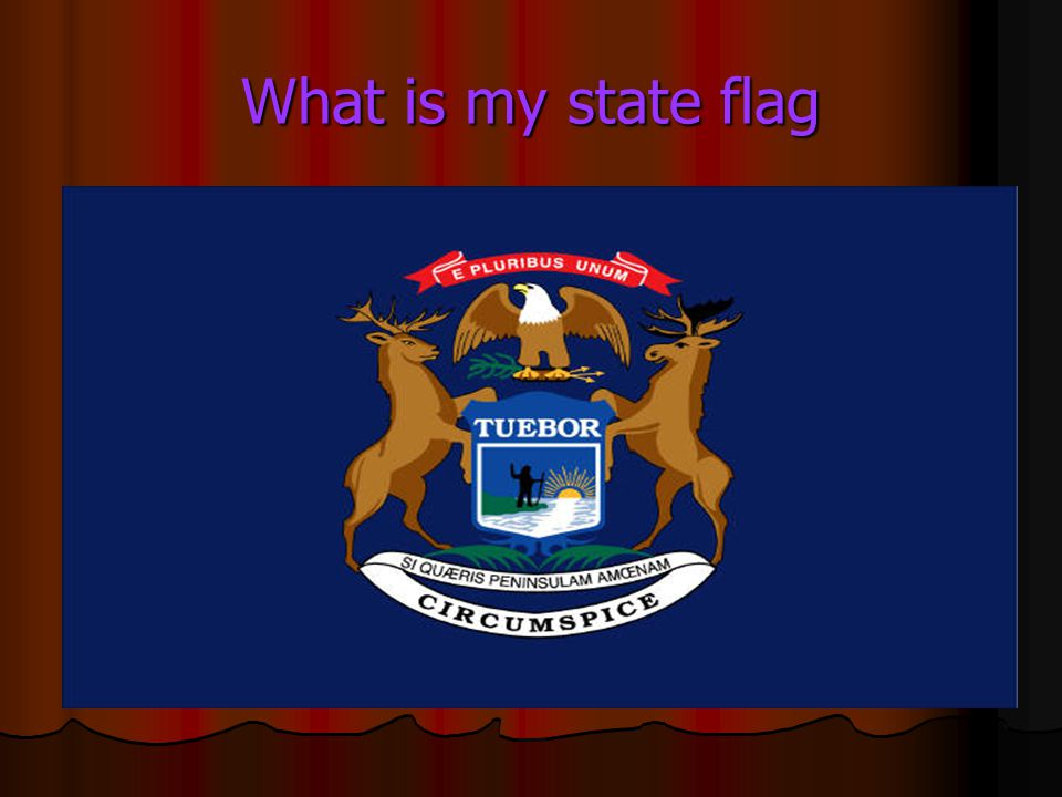 What is my state flag