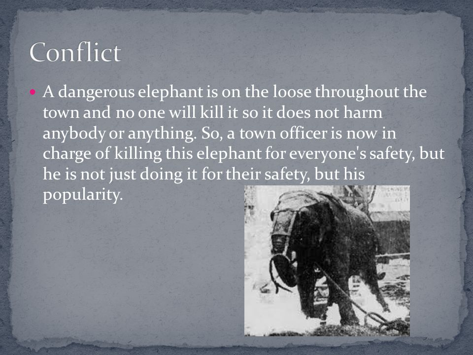 To the elephant issue, the officer finally shoots the elephant and killed it.