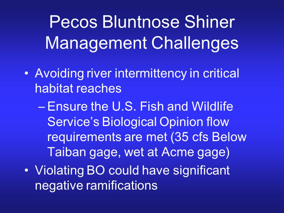 Pecos Bluntnose Shiner Management Challenges Avoiding river intermittency in critical habitat reaches –Ensure the U.S. Fish and Wildlife Service's Bio
